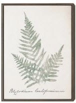 Coaster Ferns Wall Art