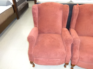 Synergy Edie Red Wingback Recliner